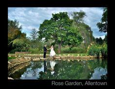 Rose Garden, Allentown PA