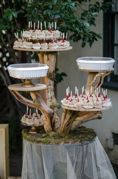 Right before the party started! A cake stand made from branches and spray moss from The Flower Garden hosted candied apples and pumpkin pie.