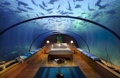 http://www.materialiste.com/wp-content/uploads/2011/12/hotel-conrad-maldives-underwater-3.jpg