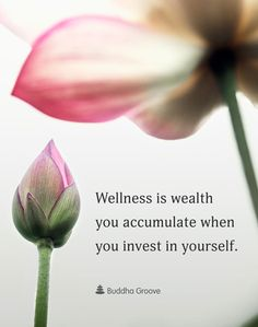 Inspiration for Wellness - Wellness is wealth you accumulate when you invest in yourself. #wellness