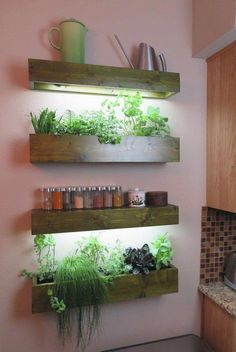 Lighted indoor wall planters #gardenIdeas #garden #gardening #plants #homeDecor #indoor #shelves #shelvesinbedroom