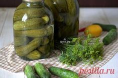 Salty Foods, Pickles, Cucumber, Pickle, Zucchini, Pickling