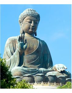 Proto Buddhism - The Original Teachings of the Buddha By Venerable Dr. Buddha Garden, Buddha Zen, Buddha Buddhism, Buddha Sculpture, Zen Meditation, Chimpanzee, Guanyin, Scenic Photography, Indian Gods