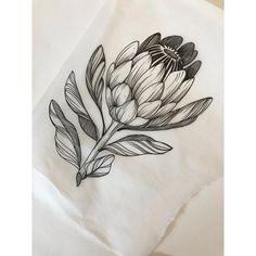 "Tori on Instagram: ""EDIT: TAKEN— thank you! • • •  I have time to tattoo this protea tomorrow at 1pm! dm me to claim ✨"" P Tattoo, Body Art Tattoos, Sleeve Tattoos, Tatoos, Black Tattoos, Small Tattoos, Australian Flowers, Australian Wildflowers, Protea Art"