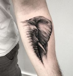 tatuajes de animales en el brazo realistas