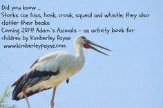 Stork -   Adam's Animals - A children's activity book www.kimberlepayne.com Kids Activity Books, Book Activities, Stork, Children, Animals, Young Children, Boys, Animales, Animaux