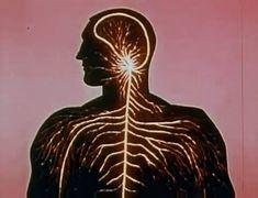 """""""Gateways to the Mind"""" (1958)"""