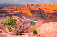Dead Horse Point State Park ...