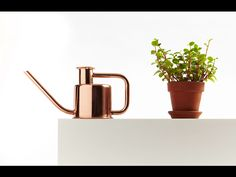 Copper goodness.  Available at gretelhome.com, $95.