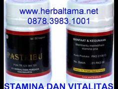 0878 3983 1001 Cara untuk mengatasi penyakit asma