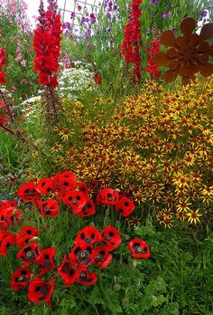 yellow and red in the garden