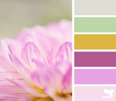 petalled tones design-seeds.com