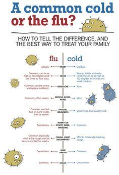 Influenza A Vs B Vs C Public Health Infectious