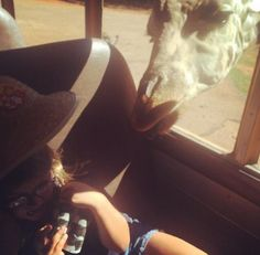 Giraffes ruin childhood. (This kid and I, we have a lot in common.)  Anonymous submission