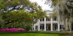 Monmouth plantation, Natchez, MS.  Beautiful grounds and rooms, also the chef is a James Beard award winner.