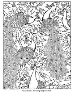 Wild Oak Academy: Free Dover Coloring Pages