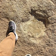 Sometimes when you walk on the beach your footprints are washed away by the next wave. And sometimes they last for 100 million years... #dinosaur #footprints #dinosaurfootprints #footprintsinthesand #salema #portugal #walkingonthebeach #newyorkartist #petersealystudio