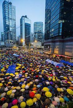 28日、香港で87秒間、傘を開く民主派(EPA=時事) ▼28Oct2014時事通信|道路占拠1カ月で集会=香港民主派 http://www.jiji.com/jc/zc?k=201410/2014102800960