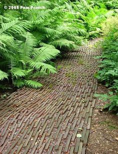 An interesting wooden path. Love how this looks.  (2008 Pam Penick)
