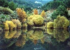 Ruta de embalses y pantanos de Madrid Plaza Del Angel, Sierra, Worlds Largest, Herbs, River, Outdoor, Lovely Things, Trips, Walking