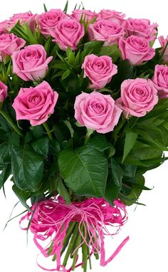 1 million+ Stunning Free Images to Use Anywhere Happy Flowers, Flowers Nature, Pretty Flowers, Silk Flowers, Rose Flower Wallpaper, Rose Flower Arrangements, Very Beautiful Flowers, Happy Birthday Flower, Romantic Roses