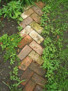 Oude bakstenen als tuinpaadje - veel mooier dan stoeptegels en toch niet superbreed. Visgraat patroon. #raisedbedsbrick
