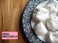 Miyoko Schinner's Artisan Vegan Cheese | Cake Maker to the Stars--Vegan and Gluten-Free