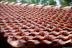Mangalore Roof Tiles - A Close Shot