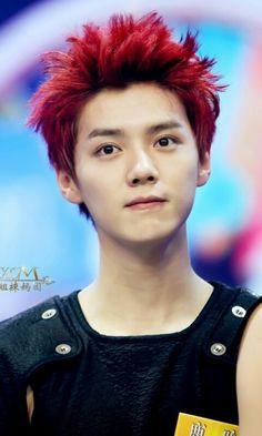 Baekhyun Chanyeol, Handsome, My Love, Deer, Red Deer, Reindeer, Sambar Deer