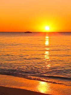 The wonderful and amazing world of the Cayman Islands   www.caymanturtlefarm.ky