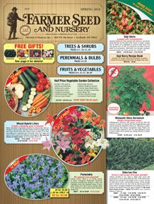 DirectGardening's One Cent Sale! - Trees, Flowers, Seeds, Bulbs, Daylilies, Perennials To buy Hostas cheap