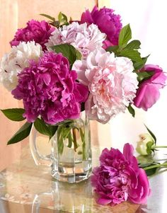 Ideas For Beautiful Nature Spring Plants Beautiful Nature Spring, Beautiful Flowers, Pink Peonies, Pink Flowers, Flowers Nature, Peony, Indoor Flowering Plants, Spring Plants, Flower Vases