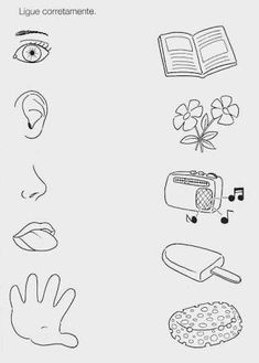 Vorschule Ideen – Rebel Without Applause Fun Worksheets For Kids, Printable Preschool Worksheets, Free Kindergarten Worksheets, Math For Kids, Five Senses Preschool, Preschool Writing, Body Parts Preschool, Preschool Learning Activities, Kids Education