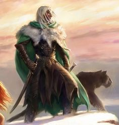 Drizzt and Guenhwyvar <3