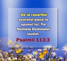 God Loves Me, Google, Religion, My Love, Forget, Bible, I Love God