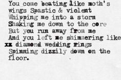 Moths Wings - Passion Pit