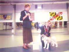 Siberian Husky, Flurry, taking Best of Breed and Group 1 at a puppy match.