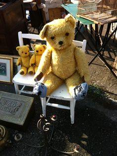 The Three bears !!! Antique & Vintage bears at Iacf Swinderby Antique fair