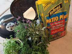 How to Turn a Dingy Old BBQ into an Herb Container Garden...i have just the old dingy BBQ to use too!