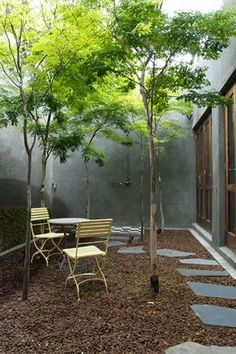 Franchesca Watson | Garden Designer. I love the shades of grey of the back and side walls that make it seem misty.