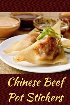 10 Most Misleading Foods That We Imagined Were Being Nutritious! An Easy Beef Pot Stickers Recipe With Homemade Dipping Sauces. These Taste Just Like A Chinese Restaurant Made Them Beef Wonton Recipe, Wonton Recipes, Appetizer Recipes, Appetizers, Asian Recipes, Beef Recipes, Cooking Recipes, Healthy Recipes, Asian Foods