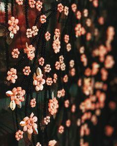 THE #CHERRYBLOSSOM DRESS IS NOW LIVE ! @cucculellishaheen #cucculellishaheen