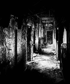 Roof Tops, Haunted Forest, Afraid Of The Dark, Dark Forest, Haunted Places, Light And Shadow, Macabre, Arches, Ruins