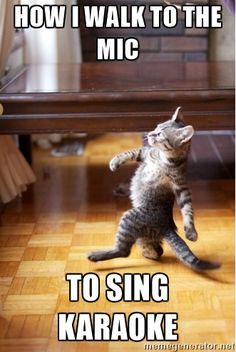 walking cat - HOW I WALK TO THE MIC TO SING KARAOKE