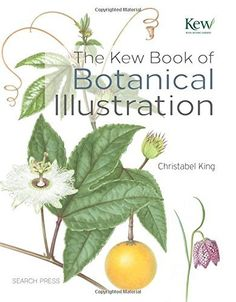 The Kew Book of Botanical Illustration: Christabel King: 9781844489473: Amazon.com: Books