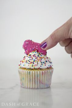 Fluffy funfetti cake topped with creamy white chocolate buttercream and finished with rainbow sprinkles and a frosted animal cookie. Circus Theme Cupcakes, Circus Cookies, Themed Cupcakes, Cupcake Cookies, Cupcake Ideas, Cupcake Recipes, White Chocolate Buttercream, Funfetti Cake, Rainbow Sprinkles