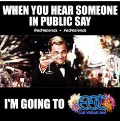 Rave humor EDC 2015