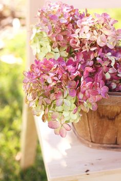 pink and green hydrangea Hortensia Hydrangea, Pink Hydrangea, Flower Power, My Flower, Fresh Flowers, Pink Flowers, Beautiful Flowers, Decoration Plante, Jolie Photo