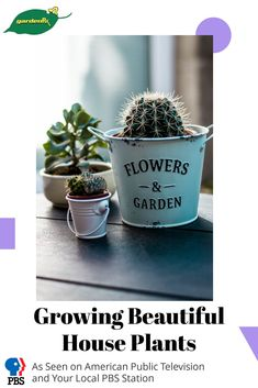 Learn the secrets of growing beautiful, healthy house plants, be the envy of your gardening neighbors, learn these timeless tricks to make your garden grow.