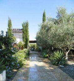 aménagement-jardin-méditerranéen-yucca-oliviers-cyprès-allée-arbustes